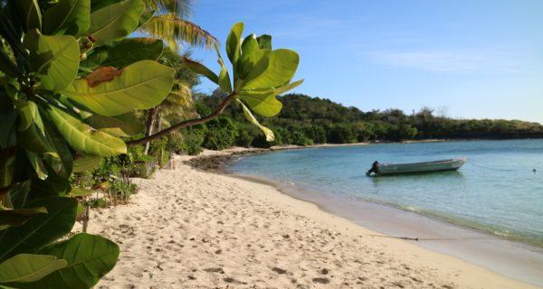 Barefoot Manta Island – Der Letzte Stop Meiner Fiji Reise